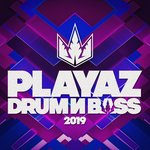 Playaz Drum & Bass 2019 (Explicit)