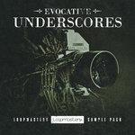 Evocative Underscore (Sample Pack WAV/APPLE/LIVE/REASON)