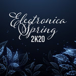 Electronica Spring 2K20