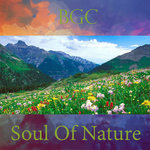 Soul Of Nature