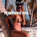 Peregrination Vol 7