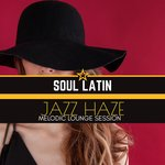 Jazz Haze -Melodic Lounge Sessions