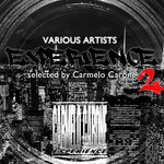 Experience Vol 2