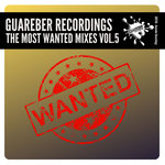 Guareber Recordings The Most Wanted Mixes Vol 5