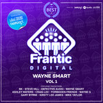 Best Of Frantic Digital Vol 1