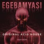 Original Acid House (Sample Pack WAV/APPLE/LIVE/REASON)