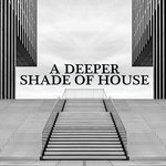 A Deeper Shade Of House