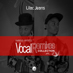 Vocal Remixes Collection Vol 2