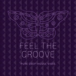 Feel The Groove (Pure Deep-House Vibes)