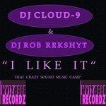 I Like It (That Crazy Sound Music Camp Mix)