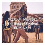 Big Room Mix 2020 - The Best Of Festival EDM Vol 1