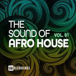 The Sound Of Afro House Vol 01