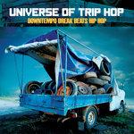 Universe Of Trip Hop