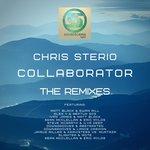 Collaborator (The Remixes)