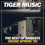 The Best Of Gangsta House Spring '20