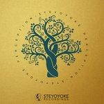 Steyoyoke Perception Vol 2