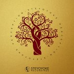 Steyoyoke Perception Vol 3