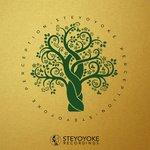 Steyoyoke Perception Vol 5
