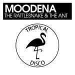 The Rattlesnake & The Ant