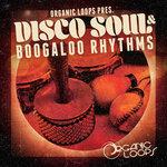 Disco Soul & Boogaloo Rhythms (Sample Pack WAV/APPLE)