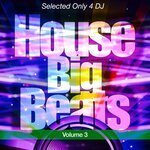 House Big Beats Vol 3