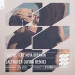 Saltwater (AVIRA Extended Remix)