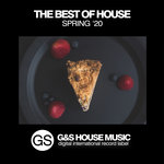 The Best Of House (Spring '20)