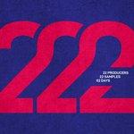 Various Artists 22-2
