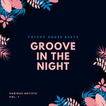 Groove In The Night (Catchy House Beats) Vol 1