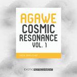 Cosmic Resonance Vol 1 (Sample Pack WAV)