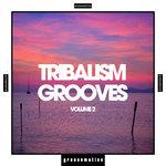 Tribalism Grooves Vol 2