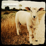 The Chilled Sheep Vol 1