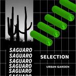 Saguaro Selection