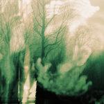 Winte (Remixes)