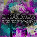 Trip To Knowhere