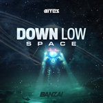 Down Low/Space