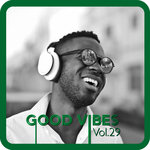 Good Vibes Vol 29