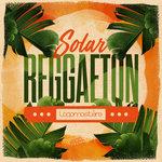 Solar Reggaeton (Sample Pack WAV/LIVE)