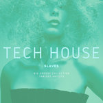 Tech House Slaves (Big Groovy Collection)