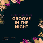 Groove In The Night (Catchy House Beats) Vol 3