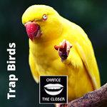 Trap Birds