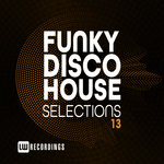Funky Disco House Selections Vol 13