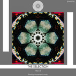 The Selection Vol 8