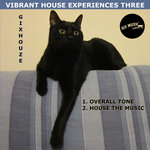 Vibrant House Experiences Three