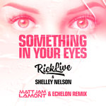 Something In Your Eyes (Matt Jam Lamont & Echelon Remix)