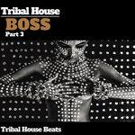 Tribal House Boss Pt 3 (Tribal House Beats)