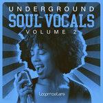 Underground Soul Vocals 2 (Sample Pack WAV)