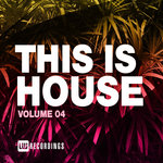 This Is House Vol 04