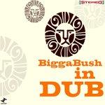 Biggabush In Dub