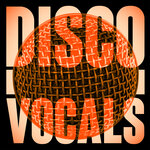 Disco Vocals/Soulful Dancefloor Cuts Feat 23 Of The Best Grooves